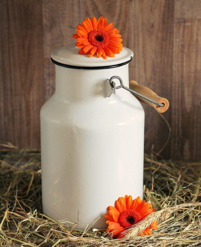 כד חלב